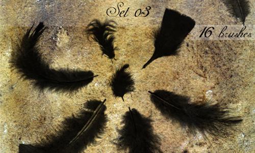 Photoshop(フォトショップ)羽毛ブラシ2