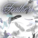 美しい羽根や羽毛を集めたPhotoshop(フォトショップ)羽毛ブラシ無料素材集