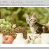 画像、動画、Google Map… あらゆるメディアをLightBox風に表示させる「mediaboxAdvanced」 トップ